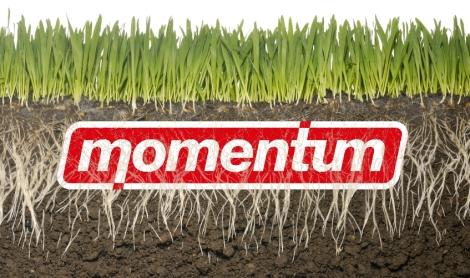 momentumgrassroots.jpg