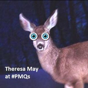 may-deer
