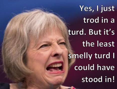 may-turd