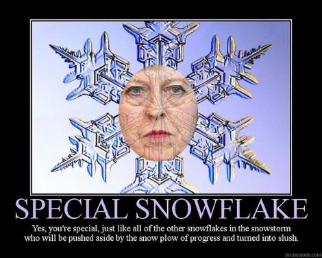 may special snowflake